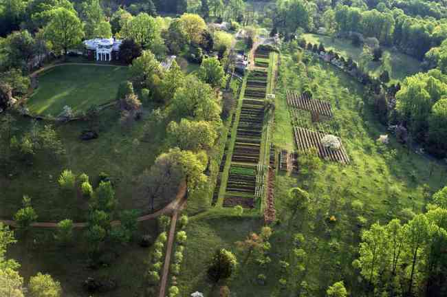 aerial view of Monticello