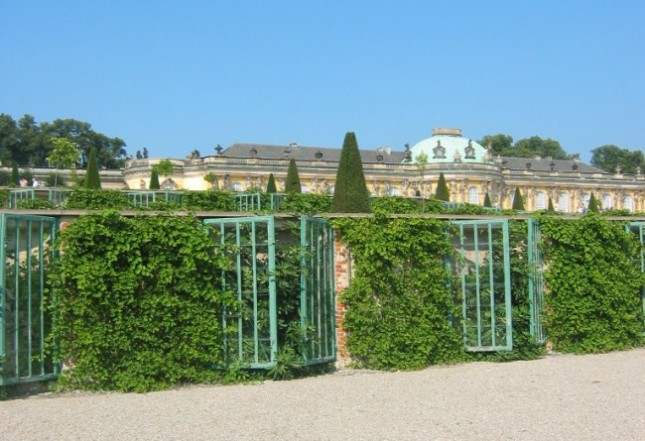 The terraced vineyard and espaliered orchard