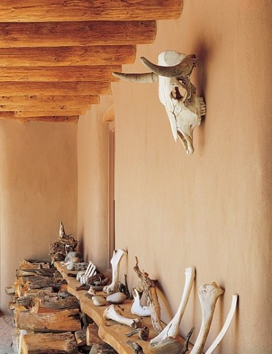 15. bones at Ghost Ranch