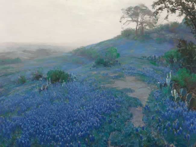 Image 2 _Julian_Onderdonk_-_Blue_Bonnet_Field,_Early_Morning,_San_Antonio_Texas_(1914)