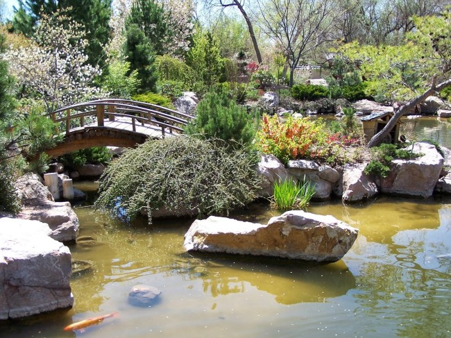 Japanese Garden at the Albuquerque Botanic Garden