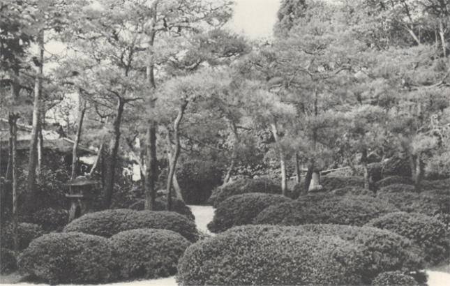 scan_JapaneseGardensToday_59_2017